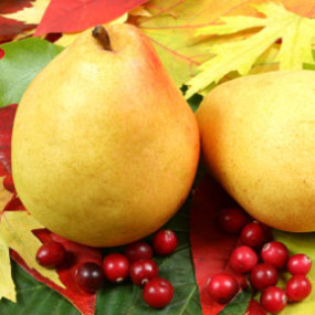 cranberry-pear